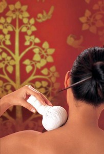 Thai Poutice Massage Continuing Education (CEU) Class Added